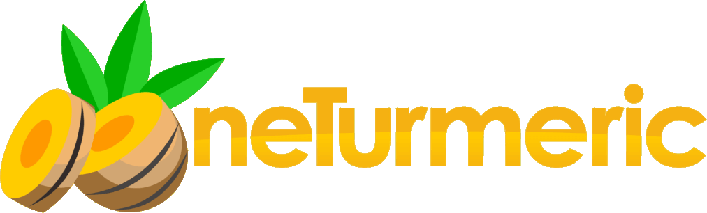 neTurmeric - Aplikasi Akuntansi Perusahaan